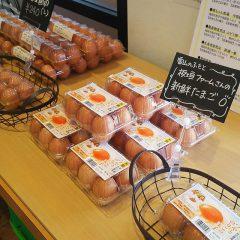 板垣ファームの卵